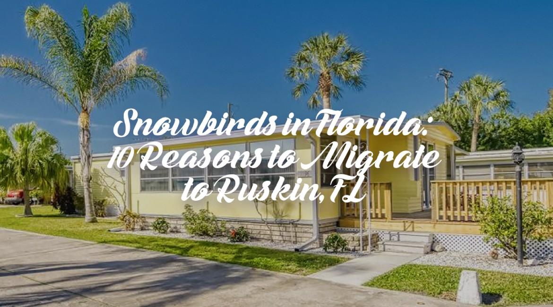 Ruskin Florida neighborhood with overlay text